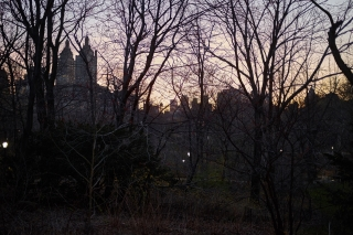 central park evening II